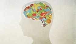 چگونه آی کیو (IQ) خود را بالا ببریم؟ 6 علت کاهش آیکیو | مجله هفتگی