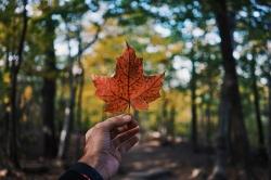 تحصیل در کانادا | مجله هفتگی