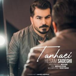 دانلود موزیک ویدیو تنهایی از حسام صادقی