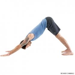 حرکات ورزش یوگا برای کمردرد - 7 حرکت یوگا برای دیسک کمر | مجله هفتگی